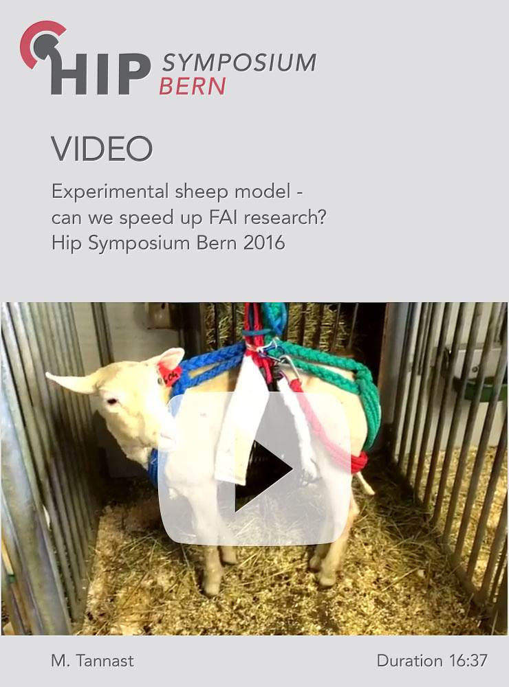 M. Tannast - Experimental sheep model - can we speed up FAI research? - Hip Symposium 2016